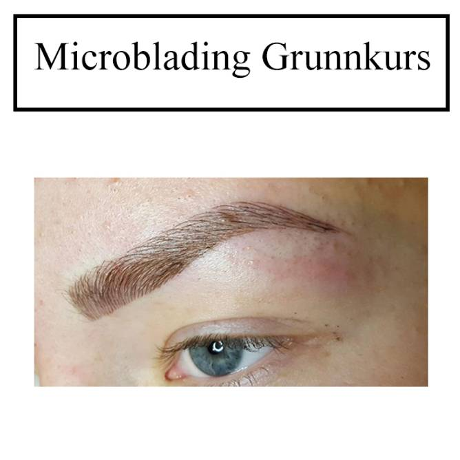 Bilde av KURS: Microblading Grunnkurs UTEN startpakke (må